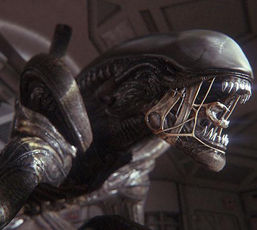 Alien xenomorph head closeup