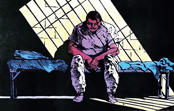 Amanda Waller in prison