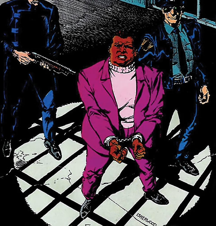Amanda Waller arrested