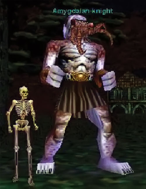Amygdalan Knight (Everquest) with a pet skeleton
