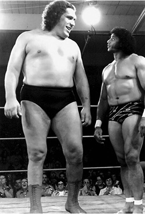 Andre the Giant (wrestler) in the ring
