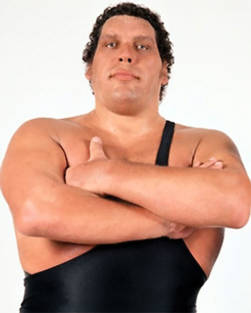 Andre the Giant (wrestler)