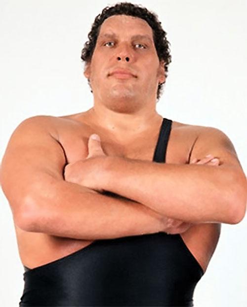 Andre the Giant (wrestler)