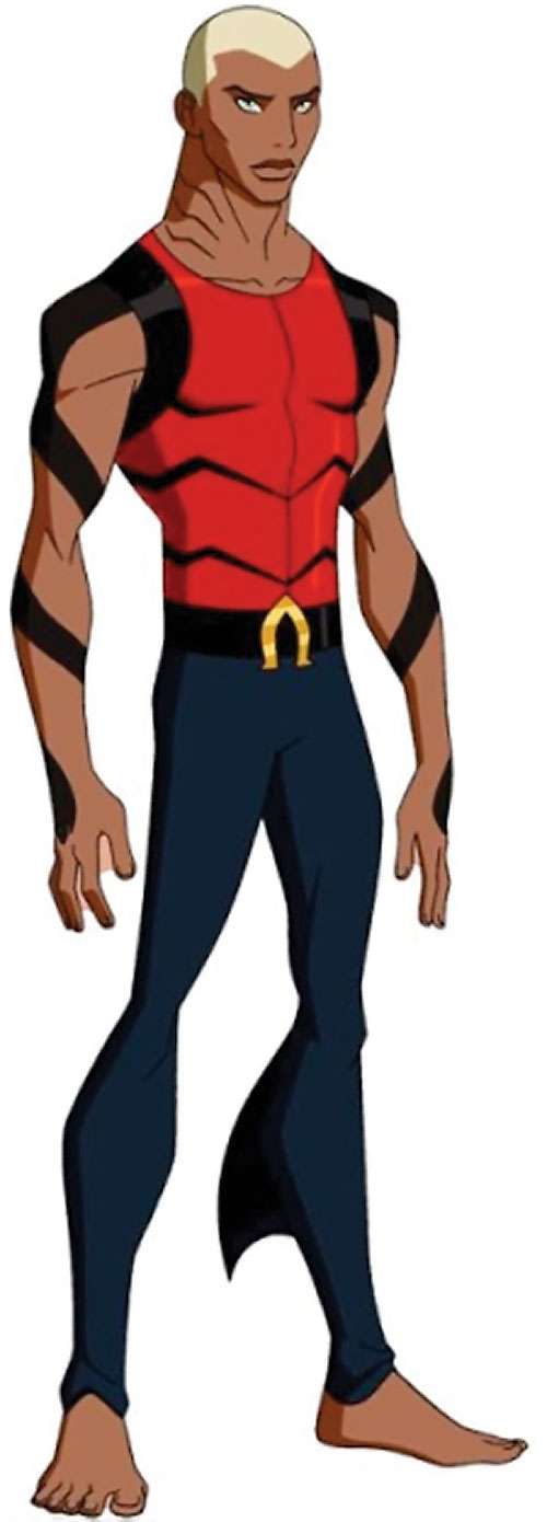 Aqualad from the Young Justice cartoon
