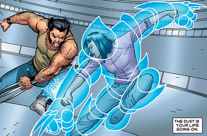 Armor and Wolverine sparring
