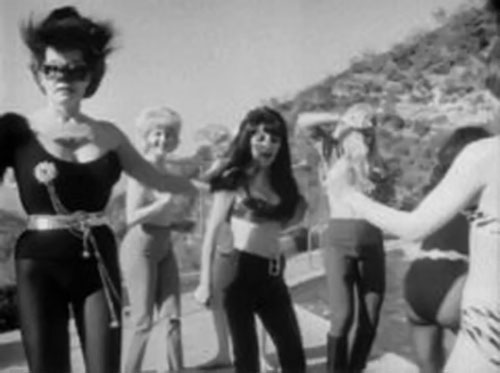 Wild Wild Batwoman (Katherin Victor in She Was a Hippy Vampire) and her batgirls