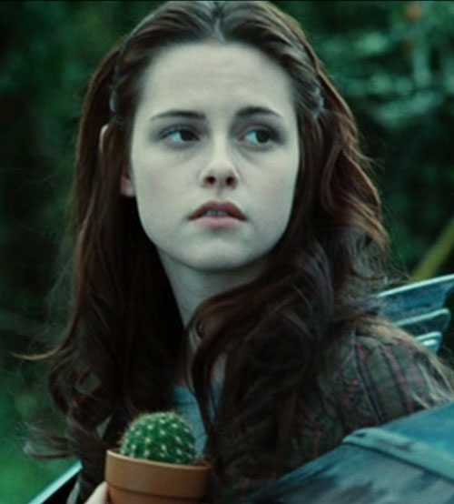 Bella Swan (Kristen Stewart in Twilight) (Early) with a small cactus