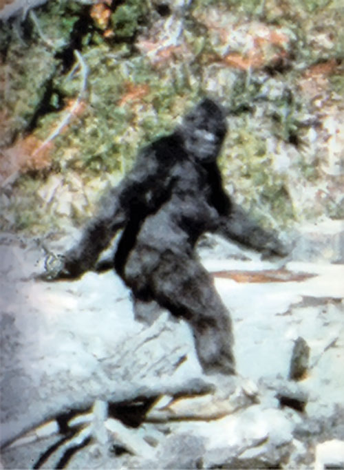 Bigfoot iconic photo