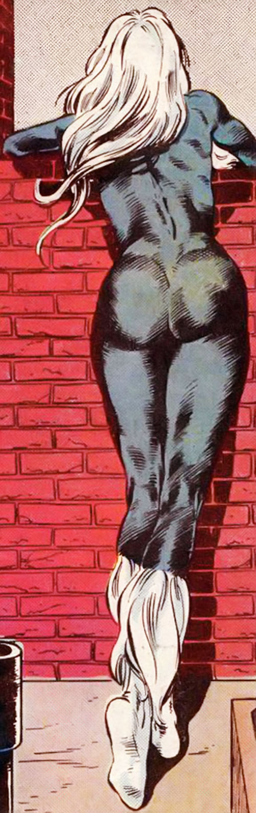 Black Cat (Spider-Man character) (Marvel Comics) rear view