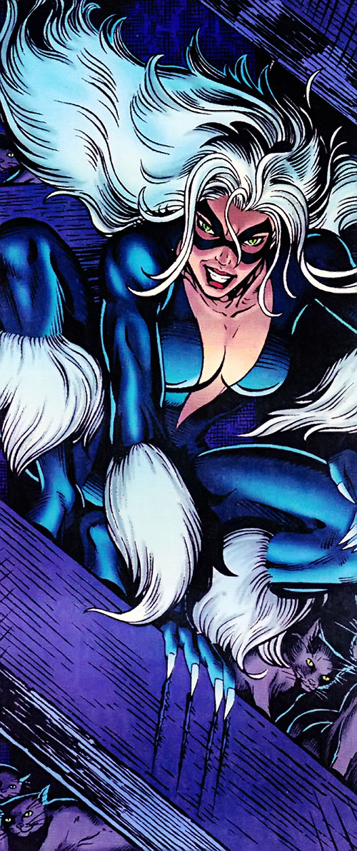 Black Cat (Spider-Man character) (Marvel Comics) prowling on a wooden beam