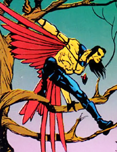 Black Condor (Ryan Kendall) (DC Comics) perched in a tree