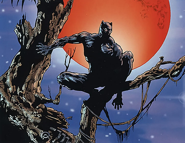 Black Panther (T'Challa) before a blood moon