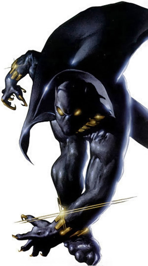 Black Panther (Marvel Comics) with gleaming equipment