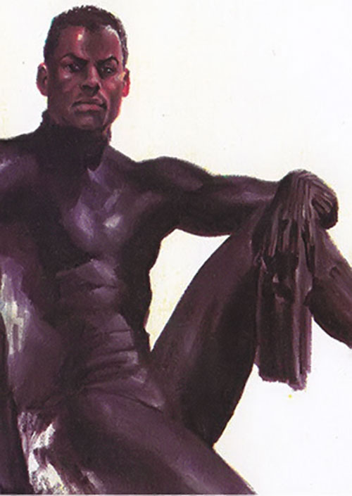 Black Panther (Marvel Comics) unmasked