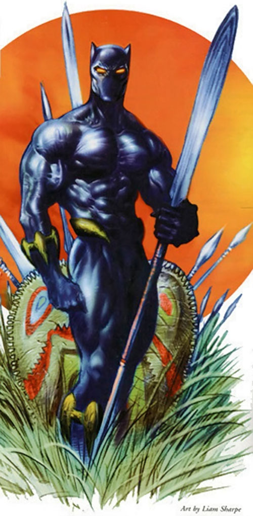 Black Panther (Marvel Comics) with traditional weapons by Sharpe