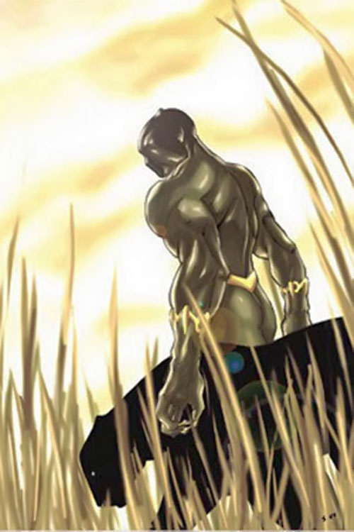 Black Panther (Marvel Comics) with a panther in the savannah