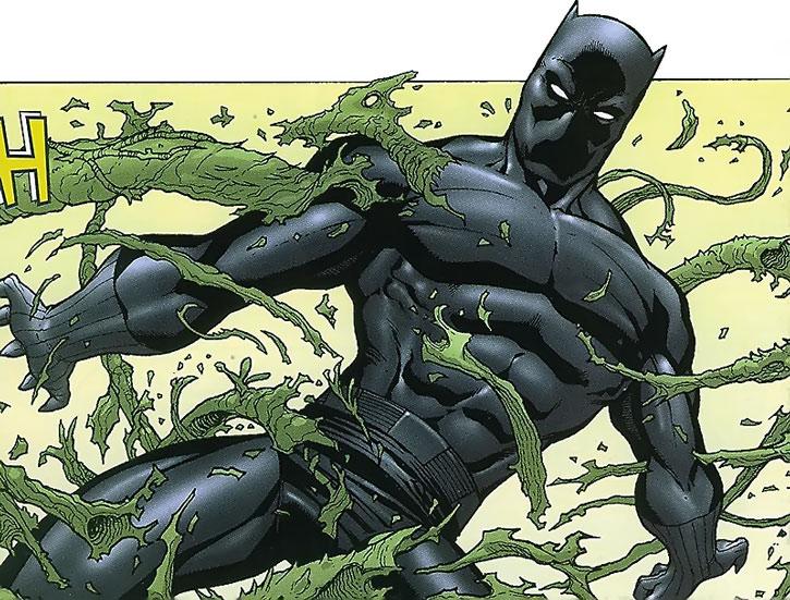 Black Panther clawing away bonds