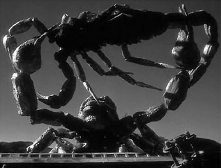 Black Scorpion (1957 monster movie) giant scorpions fight