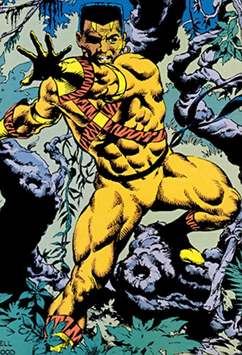 Bronze Tiger (Ben Turner) (DC Comics) in the jungle