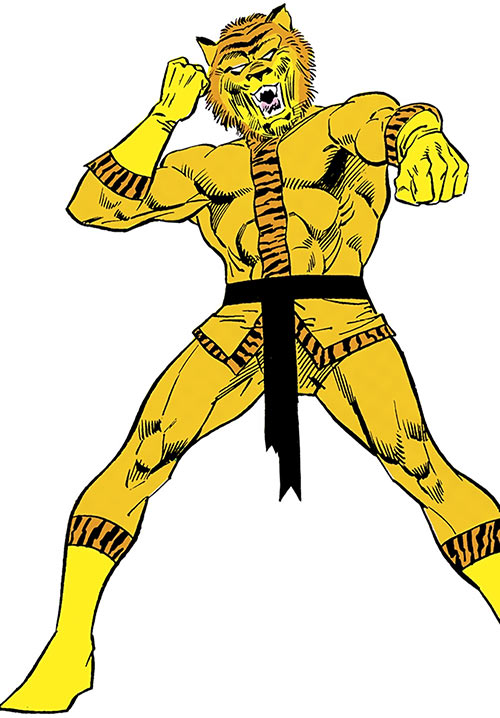 Bronze Tiger (Ben Turner) (DC Comics) from the Who's Who