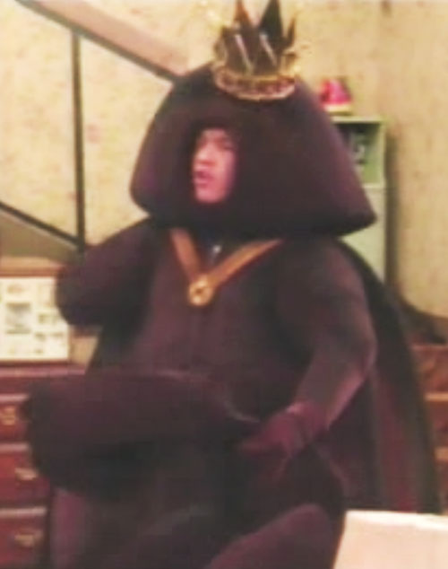 Bud Bundy (David Faustino in Married with Children) in a king roach costume