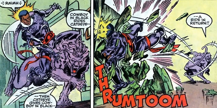 Catseye vs. Night Thrasher