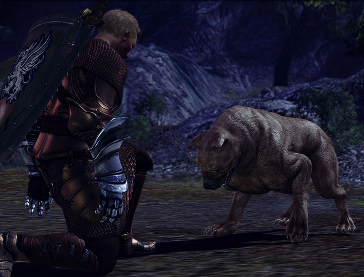 Dog the Mabari hound and Alistair
