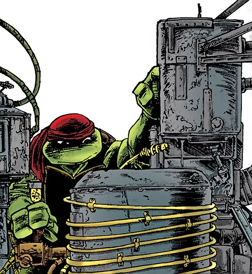 Donatello of the Teenage Mutant Ninja Turtles (TMNT comics) tinkering
