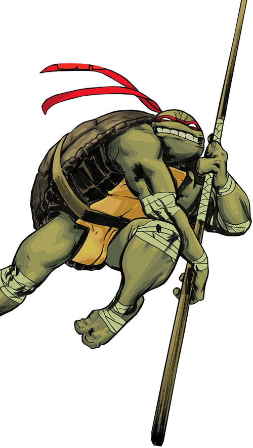 Donatello of the Teenage Mutant Ninja Turtles (TMNT comics) leaping into battle