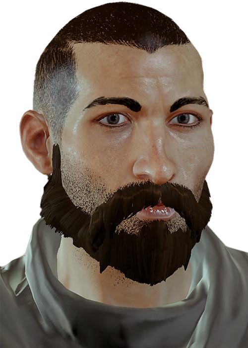 Warden Julien - Dragon Age the Calling