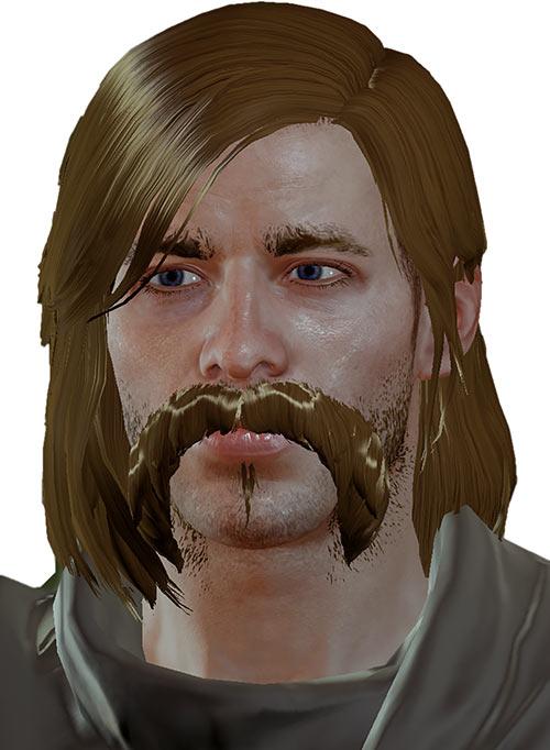 Warden Nicolas - Dragon Age the Calling