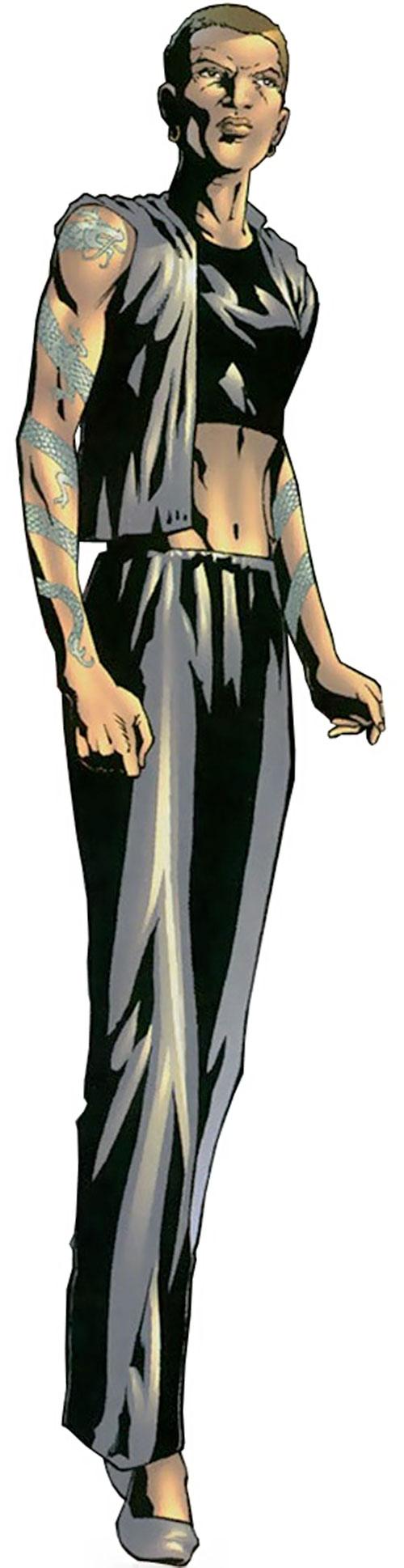 Drake (Elektra's sensei) (Marvel Comics)