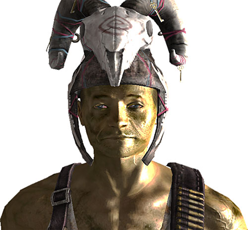Driver Nephi (Fallout New Vegas) with skull helmet
