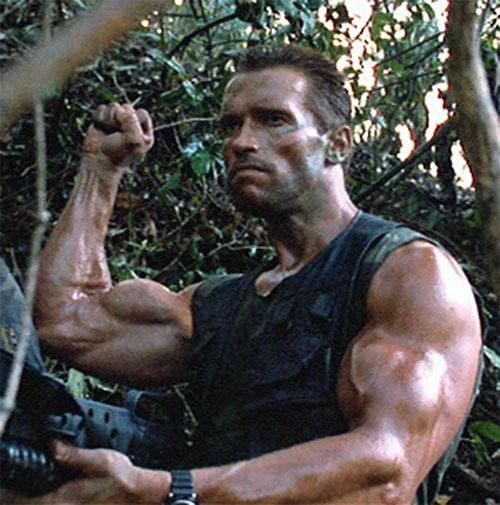 Dutch Schaeffer (Arnold Schwarzenegger in Predator) being very muscular