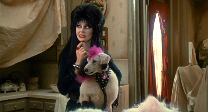 Elvira with her punk poodle