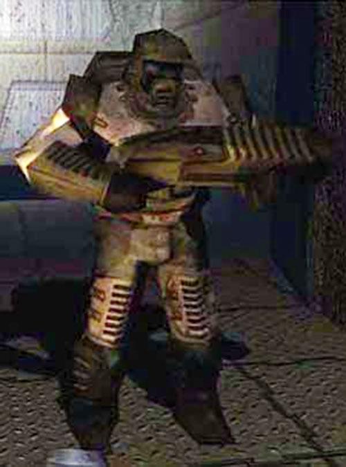 Quake Enforcer with his gun