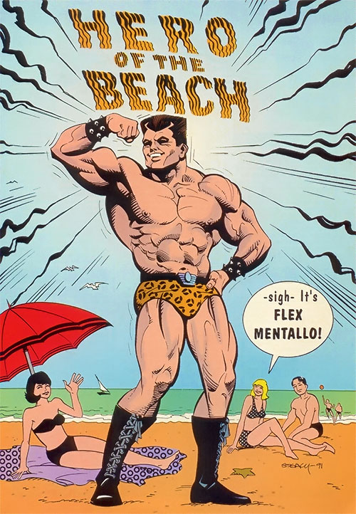 Flex Mentallo, hero of the beach