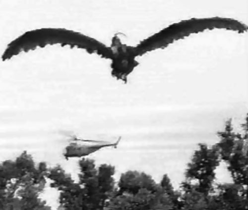 Giant Claw (1957 movie) and an helicopter