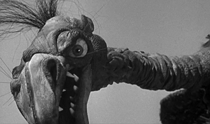 Giant Claw's head