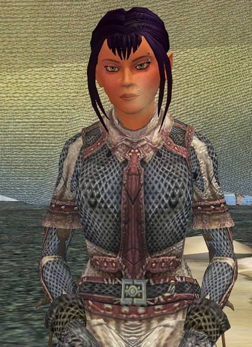 Gitane (Everquest 2 Swashbuckler) low-angle shot in ring mail