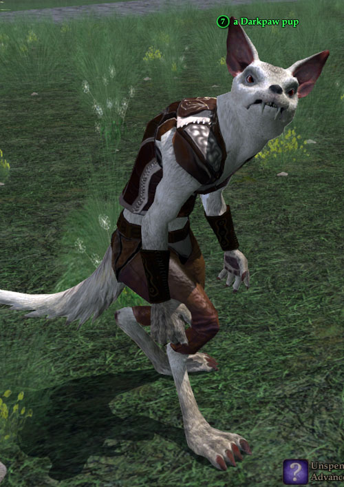 Gnoll in Everquest 2 - Darkpaw pup
