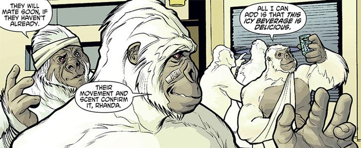 The bandaged Gorilla Knights enjoy life