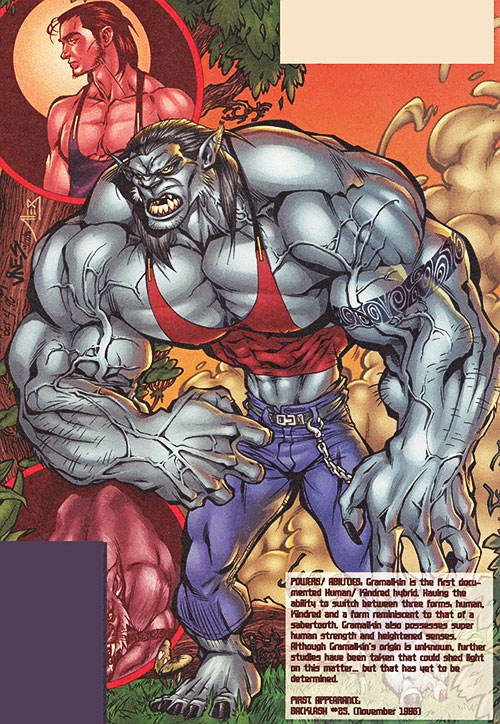 Gramalkin (Backlash ally) (Image Comics) from a sourcebook