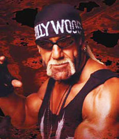 Hollywood Hogan portrait