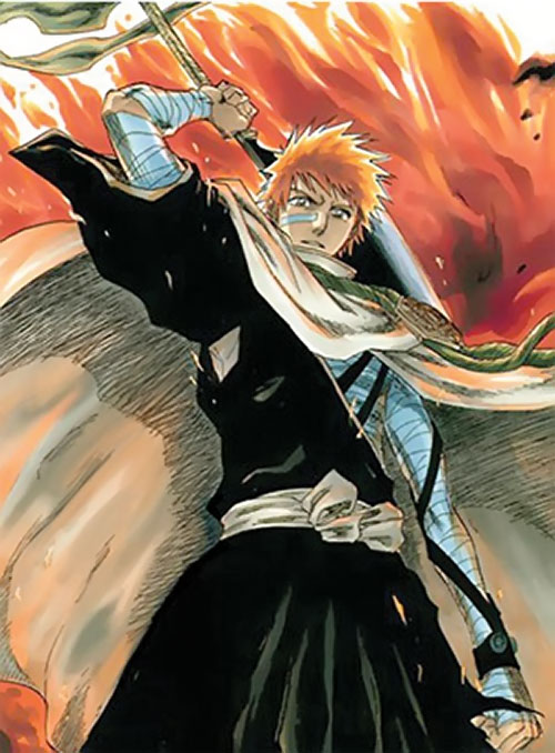 Ichigo Kurosaki from the Bleach manga low angle shot with red clouds