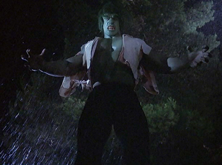 The Incredible Hulk (Lou Ferrigno) with a ripped shirt