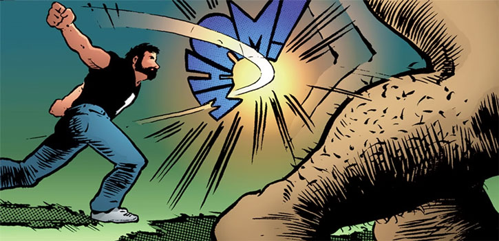 Kevin Matchstick (Matt Wagner's Mage Hero Discovered) hits a giant in the calf