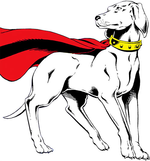 Krypto (Superman's dog) over a white background