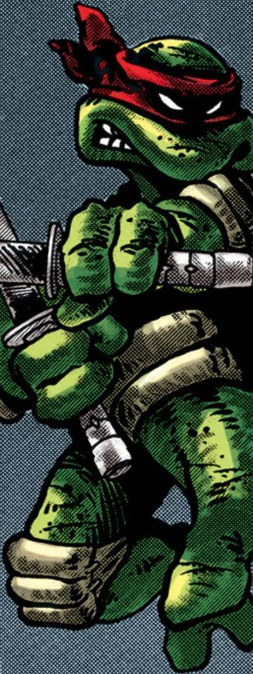 Leonardo of the Teenage Mutant Ninja Turtles (TMNT comics) leaping gray background