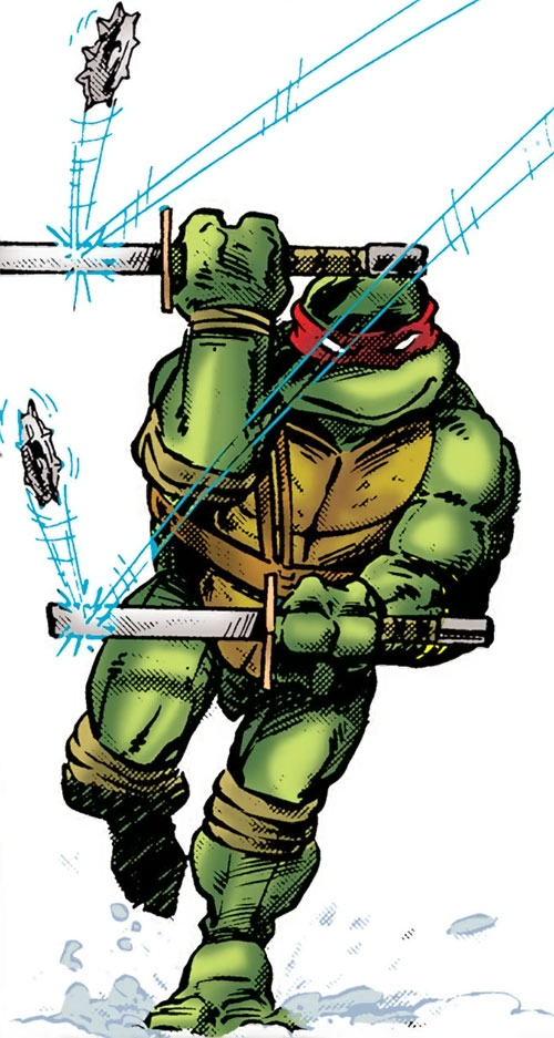 Leonardo of the Teenage Mutant Ninja Turtles (TMNT comics)